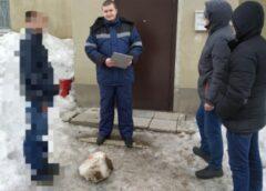 В городе Пугачев Саратовской области молодой человек убил однокурсника